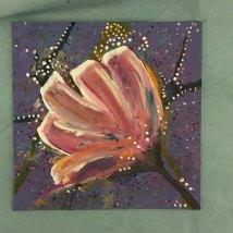 angleflower